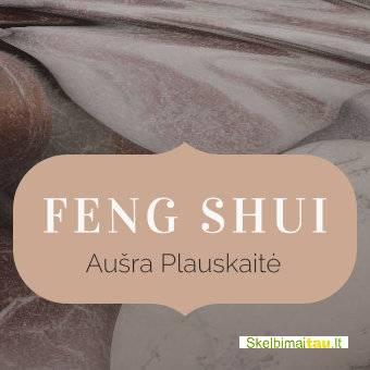 Feng shui konsultacija nekilnojamojo turto klausimais