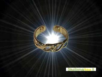 Magnetinis varinis žiedas - cmrn 12