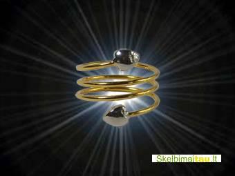 Magnetinis varinis žiedas - frrn 2