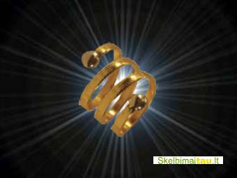 Magnetinis varinis žiedas - frrn 6