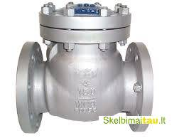 Non return  nrv  valves in kolkata