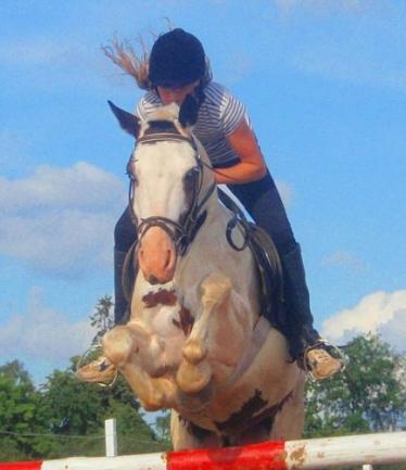 Jojimas, žirgai, pramogos, laisvalaikis