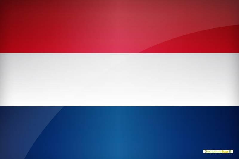 Skubus darbo pasiūlymas moterims olandijoje