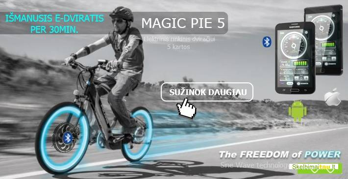 Elektrinis dviratis per 30 min