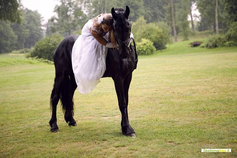Jojimas ir fotosesijos su gražuoliu fryzų veislės žirgu