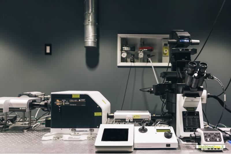 Laboratorijos paslaugos