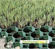 Žolės - vejos korys