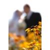 Vestuvių fotografai, vaizdo operatoriai ir kt.